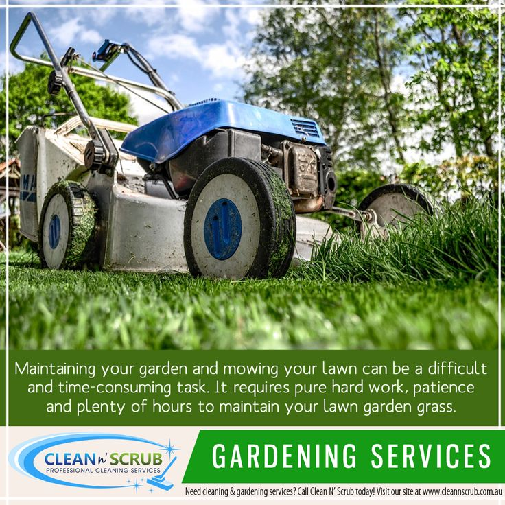 Our team of specialists are highly trained to use their skills to bring out the best in your yard. We offer lawn care and garden maintenance services, ensuring your yard is as pristine and beautiful.  Visit our website at www.CleanNScrub.com.au to view our services.  You can book a FREE quote for our services by sending us an email to booking@cleannscrub.com.au or contact us on Skype CLEANNSCRUB or phone (07) 3040 3003.