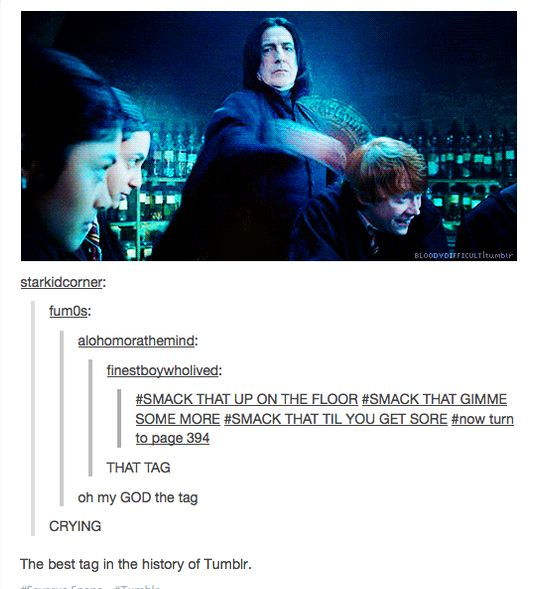 The best post in the history of tumblr amazing pinterest tags