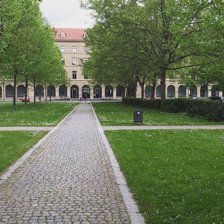 So schön kann's beim Finanzamt in Stuttgart sein!  #stuttgart #stuttgartcity #stuttgart0711 #stuttgartgram #Finanzamt #grün #Bäume #Rasen #Sommer #Sonnenschein