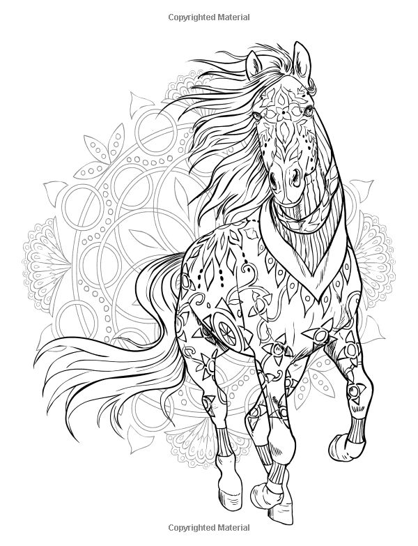 Pin By Grammy Fran On Horses Adult Coloring Coloring