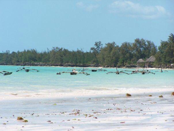 Zanzibar kiwengwa