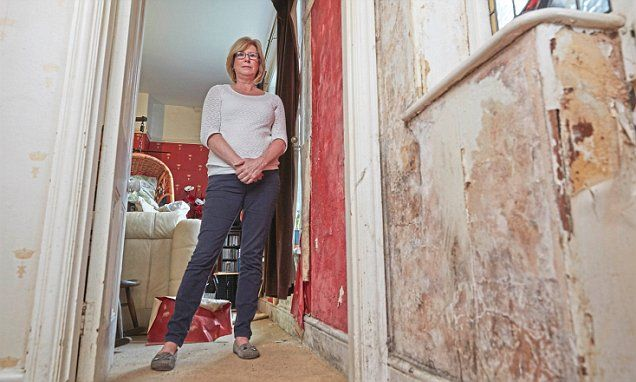 1.5 million homes blighted by damp after cowboy builders cash in on Government insulation drive
