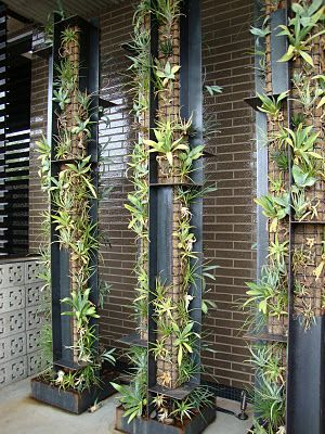 Succulent Columns From The Blog Danger Garden I M