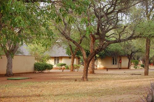 Kruger Satara Camp