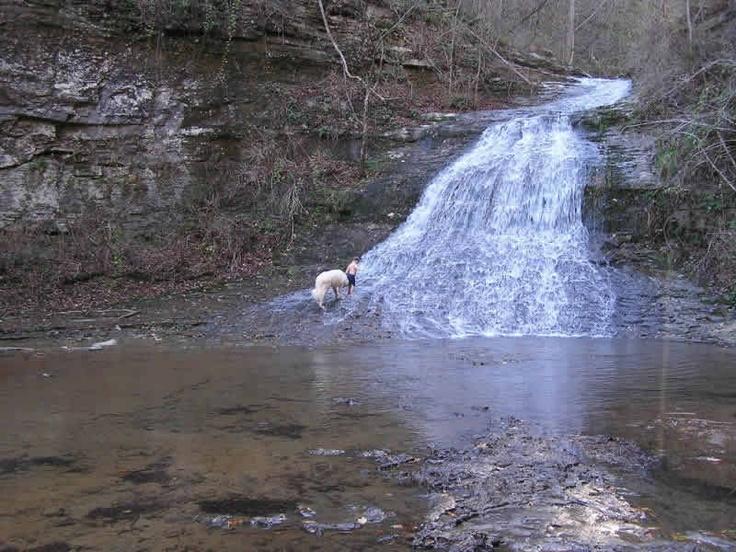 Water fall in Estillfork Alabama