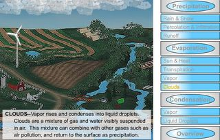 Interactive Education: Water Cycle