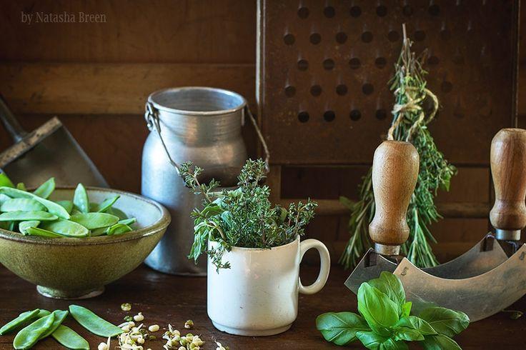 Herbs by Natasha Breen on 500px