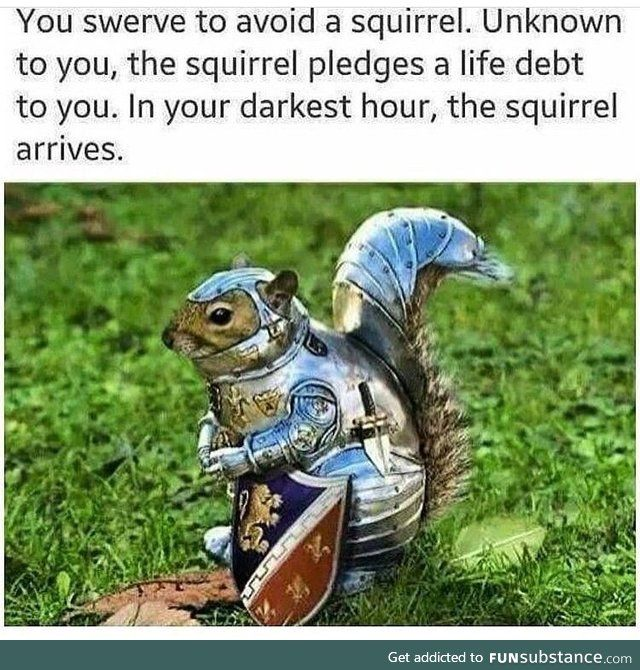 ...And screams DEUS VULT while charging into battle with his nuts<<< oml I can't breathe