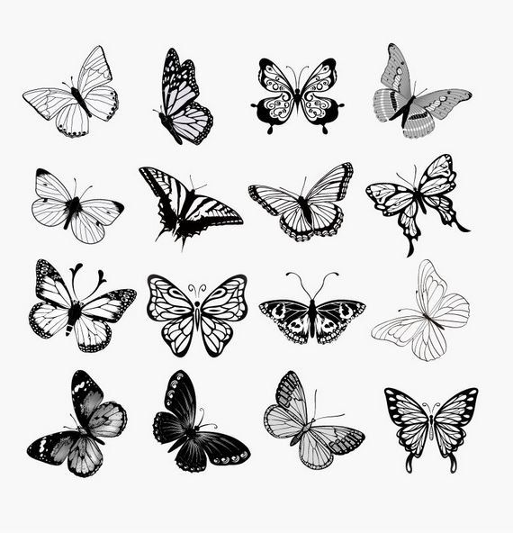 No.76 Instant download vector clipart  - Butterfly, Spinnaker, 300dpi  PNG EPS, clip art, scrapbook, drawing, funny cute sweet butterfly