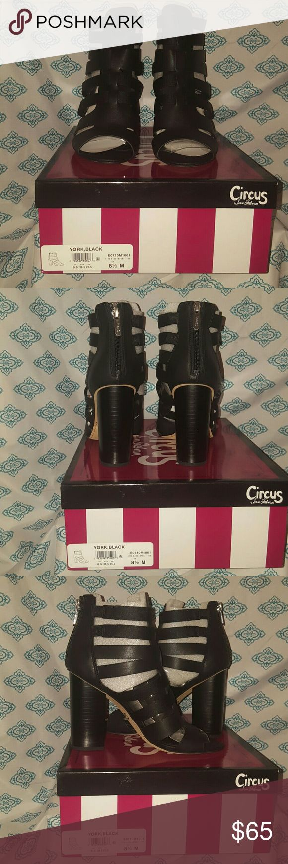 BNIB Sam Edelman circus York caged sandal BNIB Sam Edelman circus York caged sandal Never worn Will ship with box and tissue  If you have any questions or would like to see additional photos don't hesitate to ask! Circus by Sam Edelman Shoes