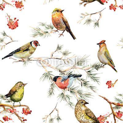 Materiał do szycia seamless texture of forest birds. watercolor painting. Zobacz materiały do szycia drukowane na zamówienie autora Aloksa. Zamów bawełniany materiał do szycia z wzorem w akwarela, wzór, bezszwowe, ptak, tło, kwiatowy, ilustracja, natura, rysunek, sztuka, projektować, vintage, ozdoba, piękny, tekstura, moda, tapeta, uroda, wektor, retro, kolor, graficzny, romantyczny, grafika, streszczenie, kolorowy, akwarela, tkanina, ręka, gałąź, ciągnione, ładny, sosna, naturalny, ozdobny…