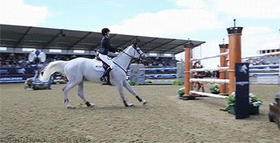 "I cannot get enough of these show jumping gifs! What an amazing and beautiful equine sport, which you could show off your love for with a custom ""jumper"" brush from WigubuHandPainted.etsy.com"