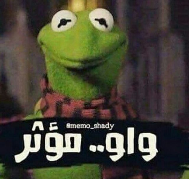 Pin By Nadeen Solyman On Funny Pic Funny Arabic Quotes Funny Jok Arabic Funny