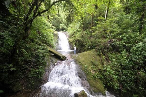Cataratas del Parque Nacional Montecristo