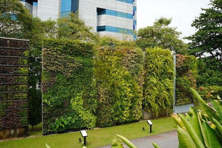 Green walls singapore hortpark living wall systems for Vertical green wall