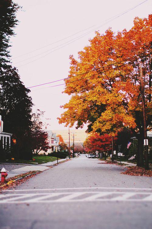 fall suburbs