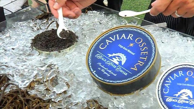 Black River Caviar lat the launch of Gracida Polo.