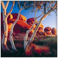 The Devil's Marbles, Northern Territory