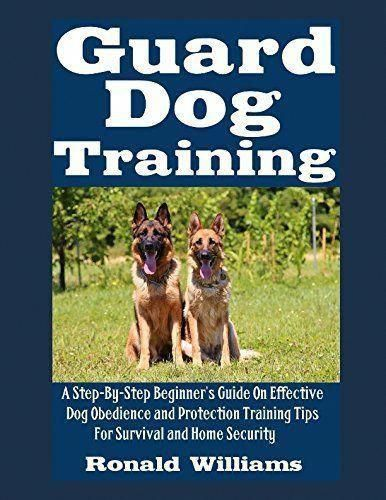 Information Help And Ideas For Basic Dog Care And Training Tips