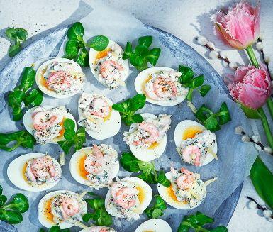 Fyllda ägghalvor med räkröra i ett recept som får extra skjuts av en smakrik lagrad ost, dill och citron. Passar perfekt både vid påsk och på julbordet. Gör sig kanske bäst med inte alltför hårdkokta ägg.