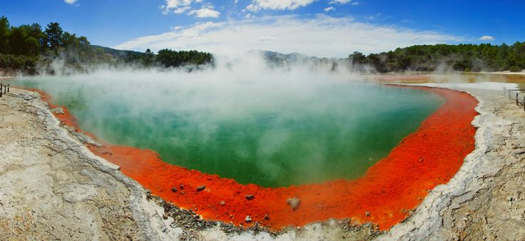 Geothermal springs in Rotorua, New Zealand.: Mud Pools, Rotorua New Zealand, Newzealand, Hot Spring New Zealand, Lakes Rotorua, Travel Ideas, Awesome Places, Photo Of, Champagne Pools