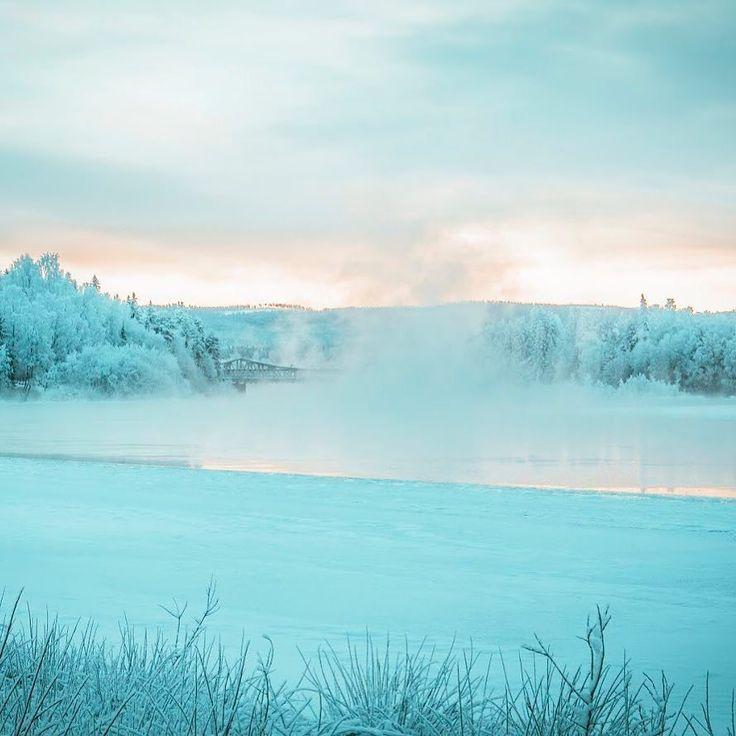 Merry christmas!       #christmas #christmas2017 #merrychristmas #winter #nature #canon70d #landscape #landscapephotography #naturephotography #ig_mood
