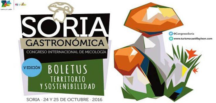 Soria, capital de la micología en octubre | Hit Cooking