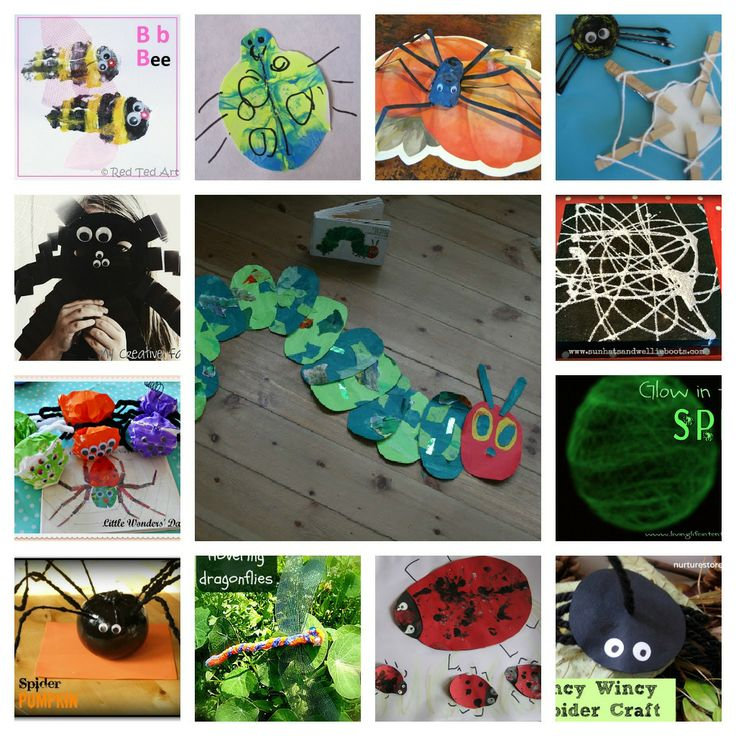 295 best images about bugs on pinterest activities bug for Bugs arts and crafts