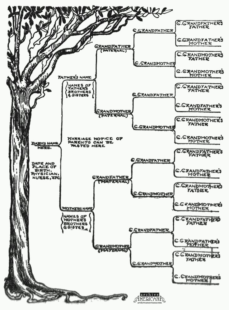 Best 25 family tree templates ideas on pinterest free family start a genealogical record for your family 1905 pronofoot35fo Gallery