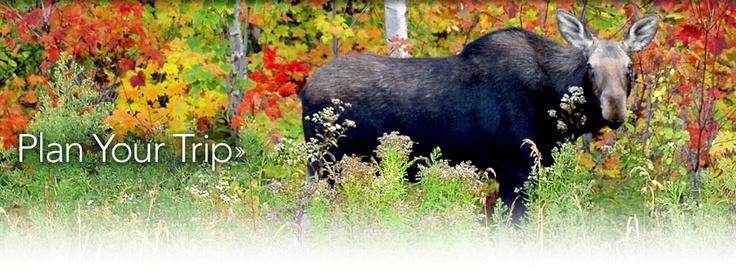 Algonquin Provincial Park | Ontario, Canada | The Friends of Algonquin Park