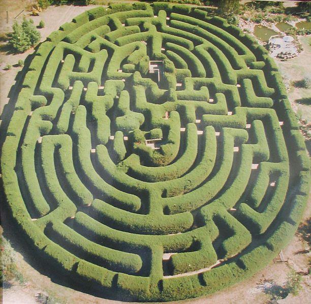 Wandiligong - largest hedge maze in New Zealand