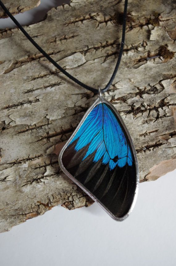 This pendant is made using a real butterfly wing. Papilio ulysses is one of the most striking swallowtail butterflies and has some of the most