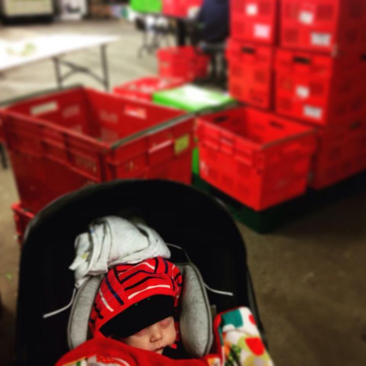 Start 'em young! The pre-pack team were working under Kenzie's supervision yesterday