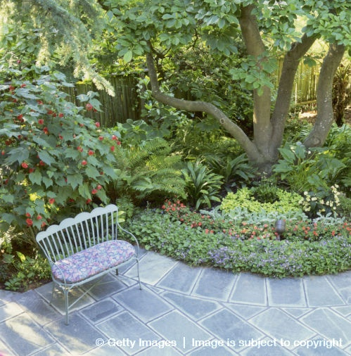 Shade garden designs garden pinterest for Shade garden designs