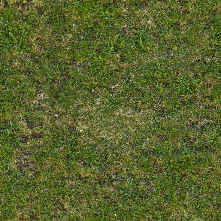 Seamless tileable grass texture by demolitiondan.deviantart.com on @DeviantArt
