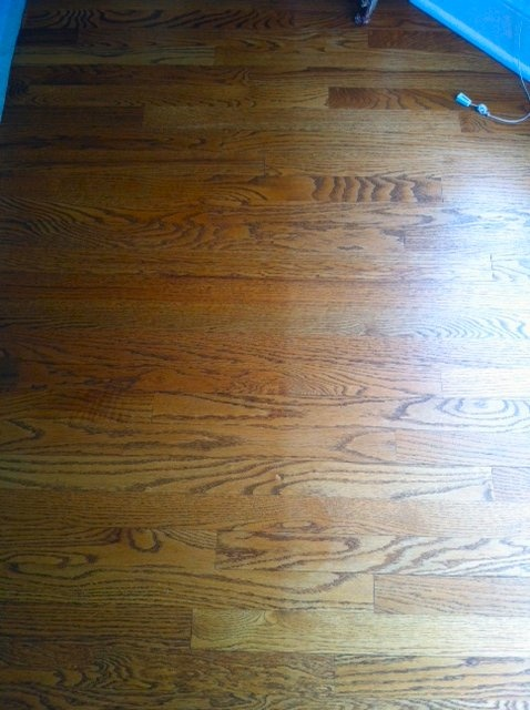 Example of a UV Sun Damaged Floor. Learn how to protect your floors by visiting: http://www.pinterest.com/3mwindowfilmusa/residential-uv-protection/