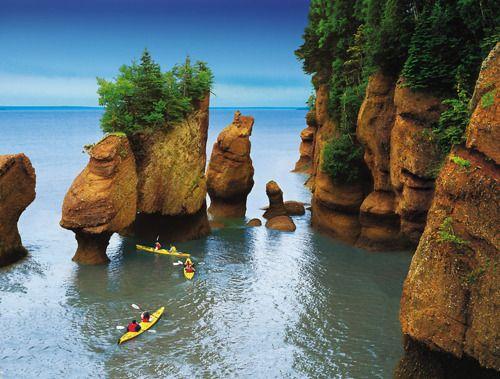 New Brunswick, Canada: North America, Bays Of Fundi, Flowers Pots, Beautiful Places, New Brunswick, Rocks Formations, National Parks, Newbrunswick, Hopewel Rocks
