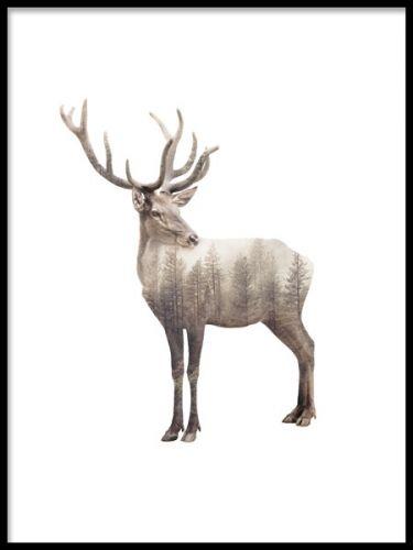 Forest deer, julisteet ryhmässä Julisteet ja painokuvat @ Desenio AB (8159)