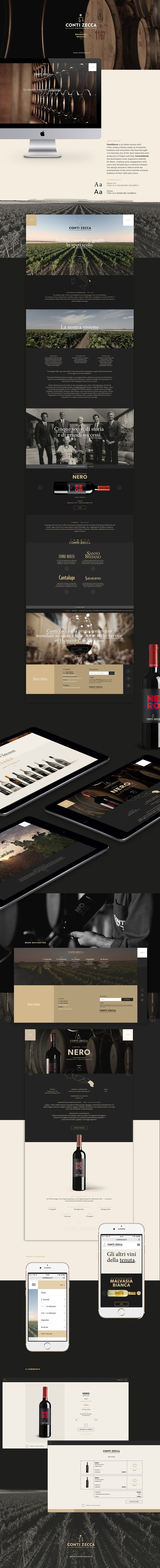 Conti Zecca | Website on Behance