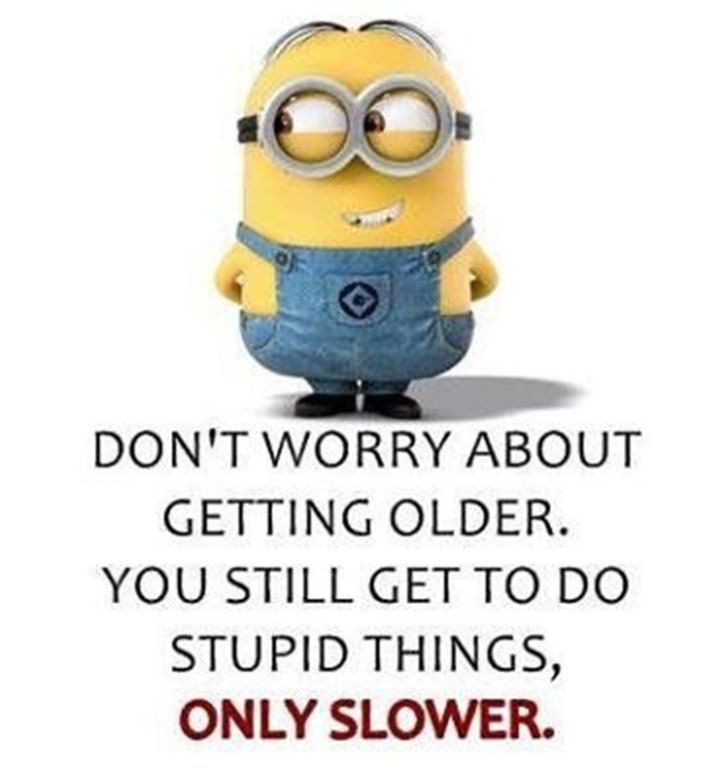 Top 28 Funny Minions Quotes and Pics | Funny Quotes | Funny ...