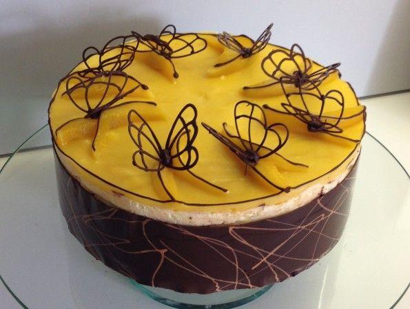 Mango Schoko Torte Schmetterling Schokolade  Kuchen und