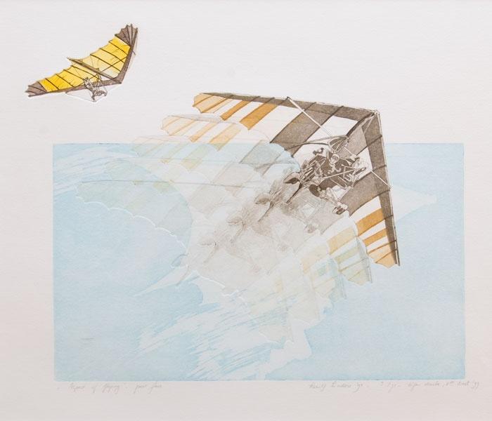 Nog een ultiem gevoel van #vrijheid: Leentje Linders - Aspect of flying