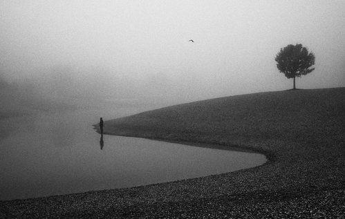 loneliness by Matija Posavec