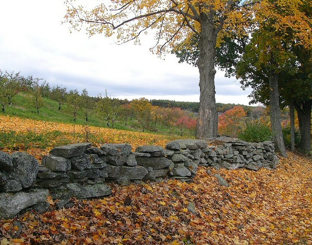 72 best new england stone walls images on pinterest on stone wall id=14117