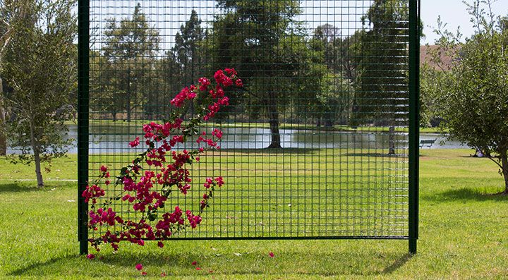 18 Best Images About Trellis On Pinterest Gardens