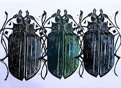 Beetles Lino Print at MANGLE PRINTS.   I chose this because I like the colour of the shell of the beetles.