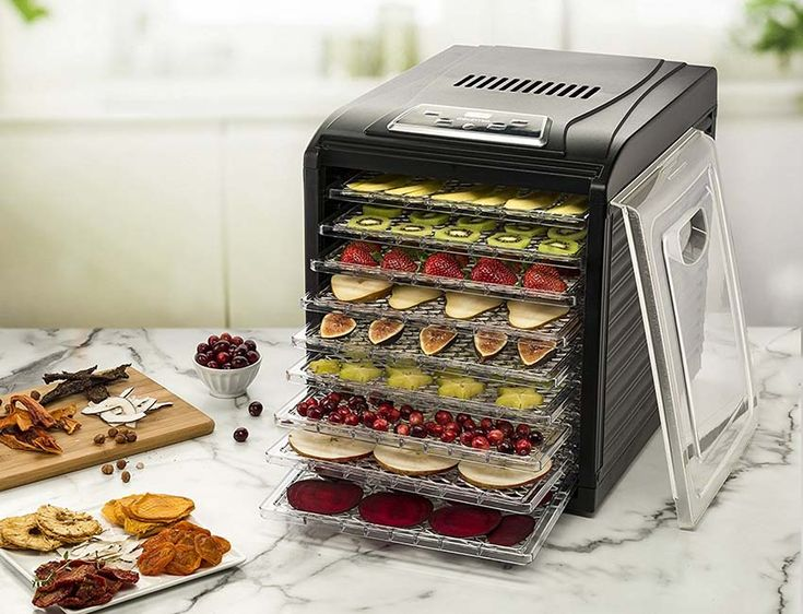 Best food dehydrator in 2019 food dehydrator reviews and