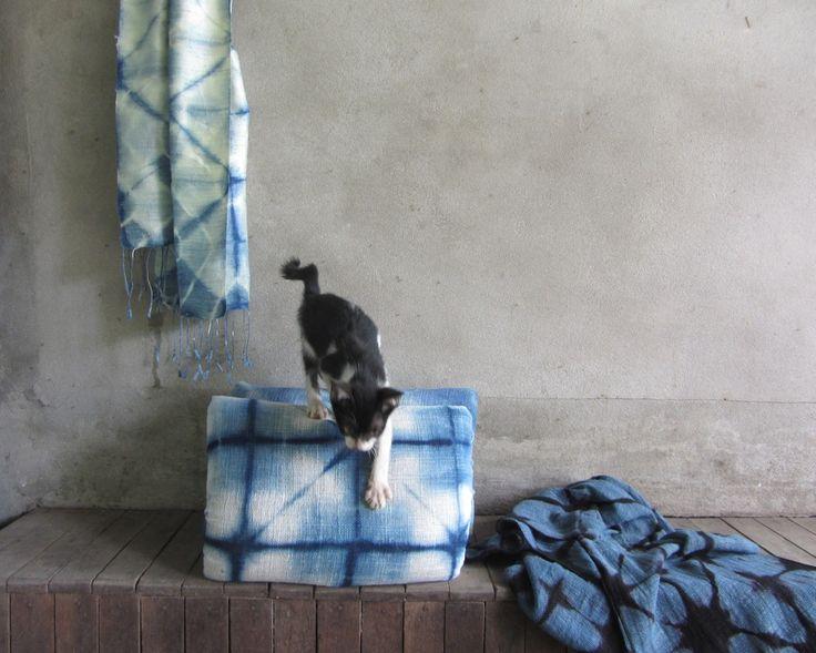 Ock Pop Tok kitten and cats play with shibori pillows and indigo scarves