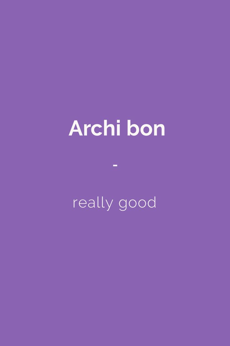 Archi bon - really good! Speak like a native French speaker with French Slang Essentials e-book. More than 600 slang terms and phrases translated. Get it for only $4.90! https://store.talkinfrench.com/product/french-slang-essential/