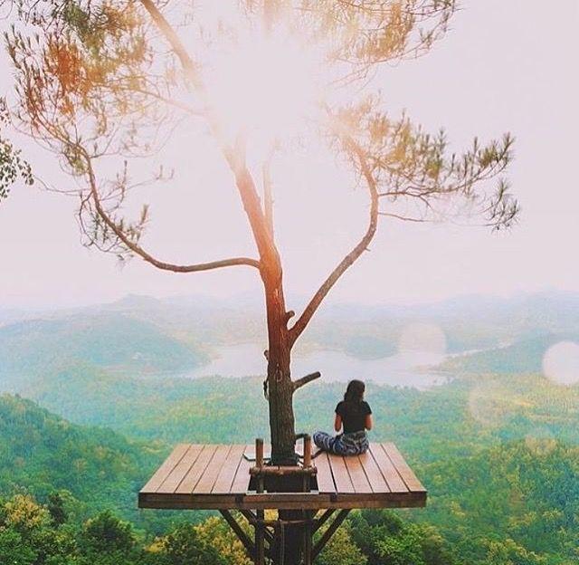 tree balcony - I want one!